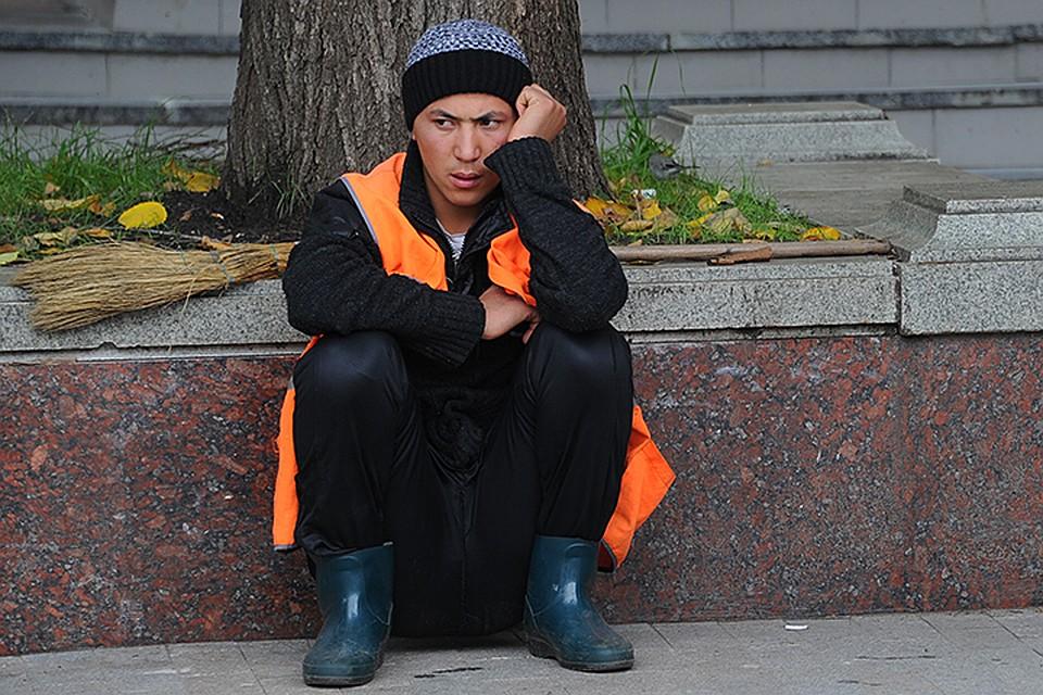 Парадокс нашего рынка труда: Своих безработных полно, а мы мигрантов нанимаем