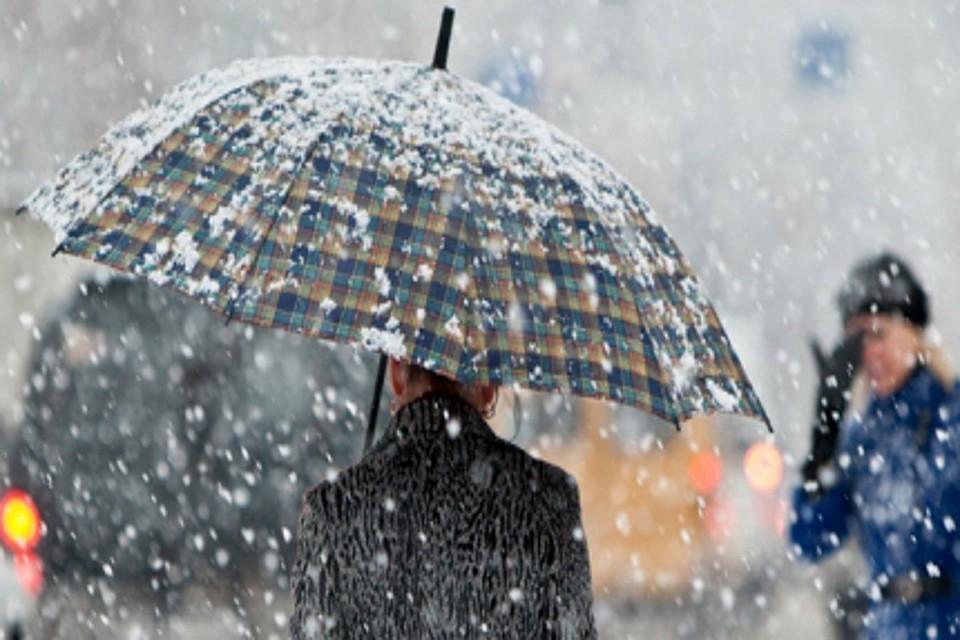 До8 градусов тепла ожидается вПетербурге ввоскресенье