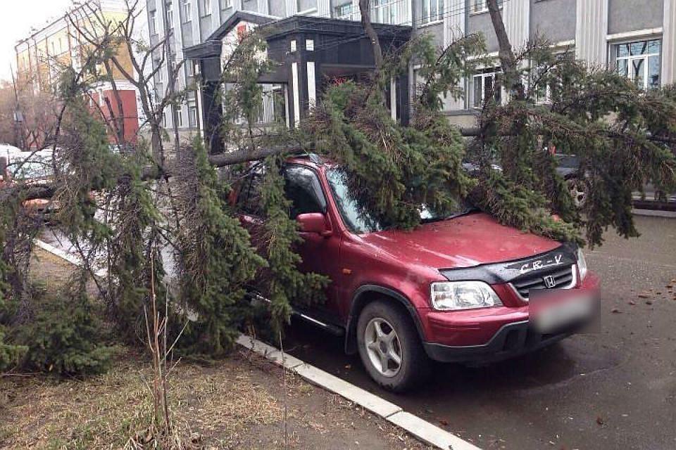 МЧС предупредило граждан Екатеринбурга оштормовом ветре