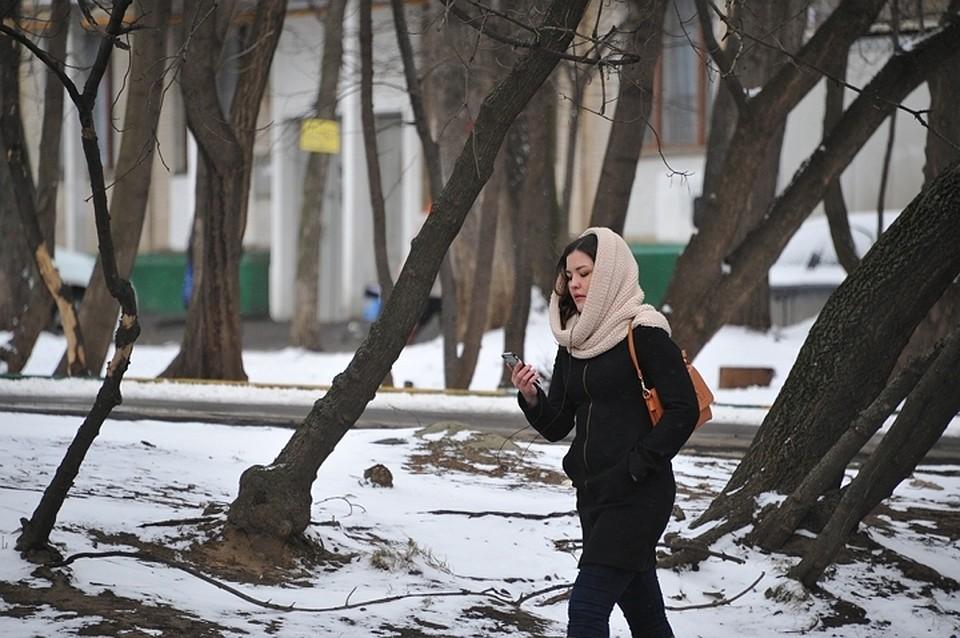 Новый снежный шторм надвигается нарегионы Западной Сибири