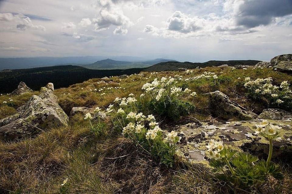 Национальный парк «Зигальга» наУрале планируется сделать  в 2018-ом