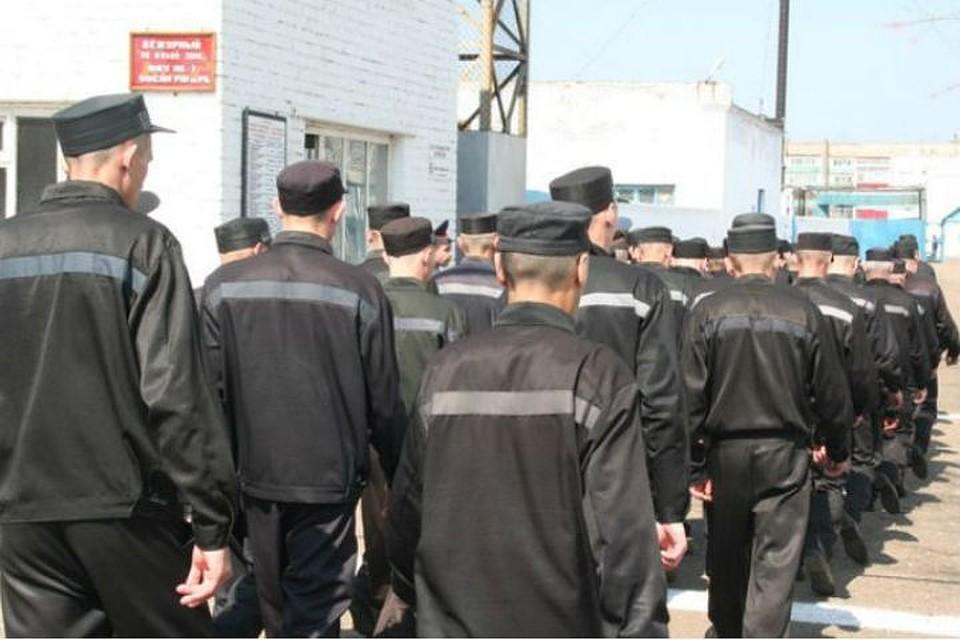 ВТатарстане осудили пособника террористической организации «Джабхат ан-Нусра»