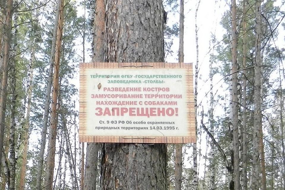 Буферная зона заповедника «Столбы» закрыта для туристов из-за опасности пожаров