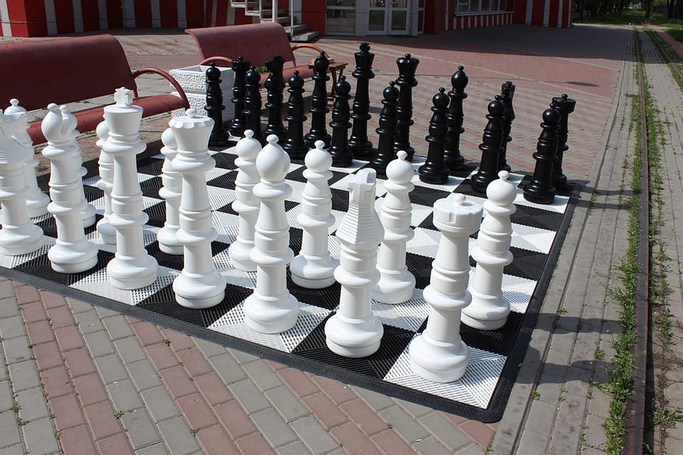 Шахматы в парке Островского. Фото: Арбат-фитнес.