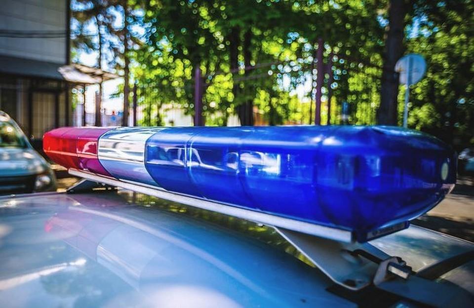 Менявшего колесо водителя сбила насмерть иностранная машина вМорозовском районе