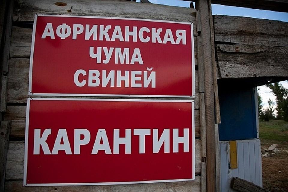 Вспышка заболевания зарегистрирована в Среднеахтубинском районе Волгоградской области