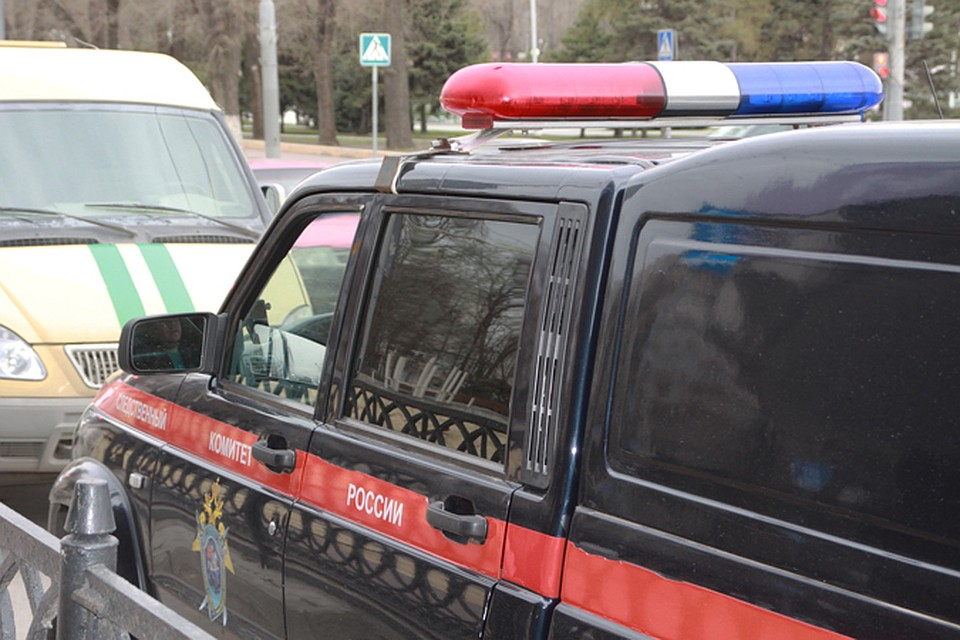Ребенок умер наопоре ЛЭП вРостовской области