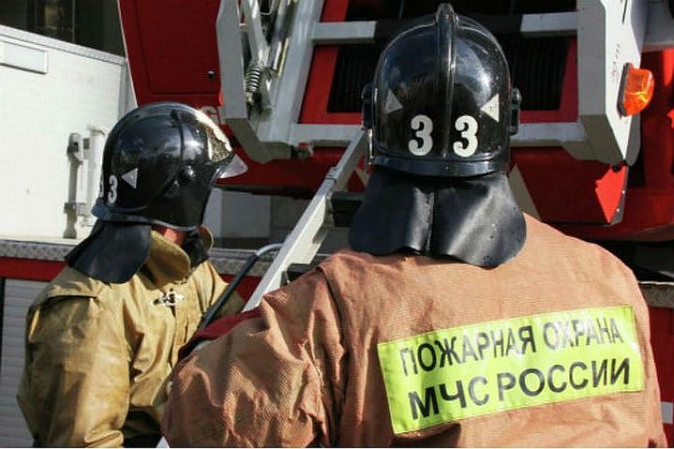 Петербург: Два человека погибли впожаре вквартире наулице Лени Голикова
