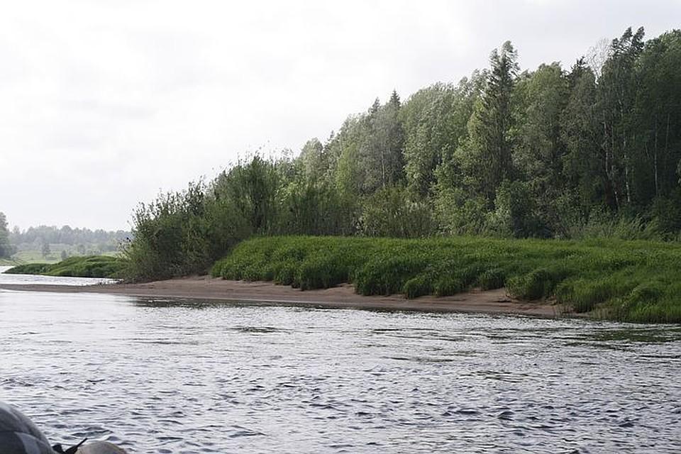 ВСмоленской области рыбак отыскал наберегу мертвого 6-летнего ребенка
