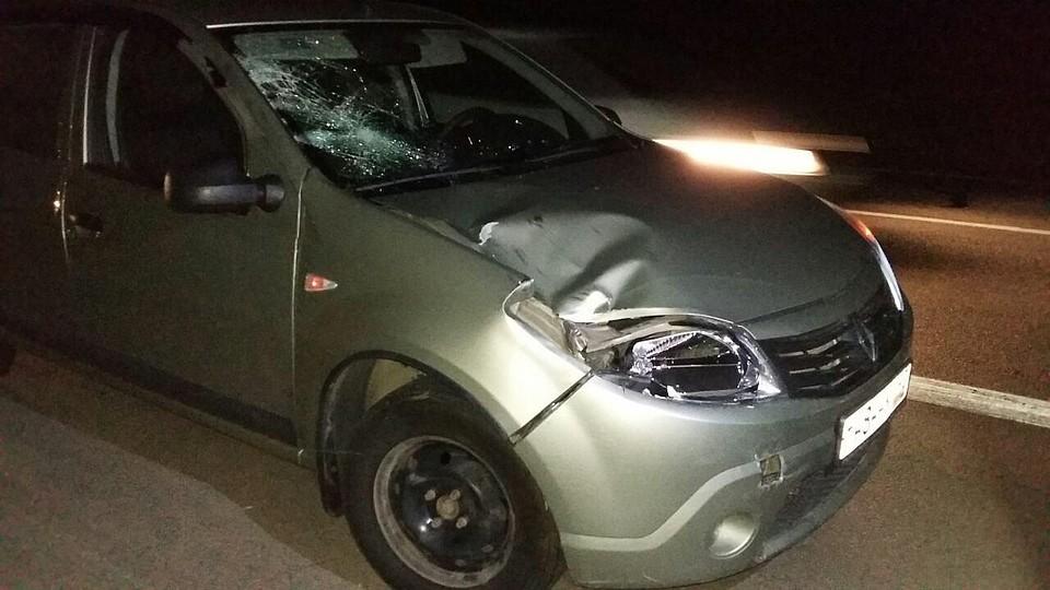 ВРостовской области шофёр Митцубиси насмерть сбил мужчину