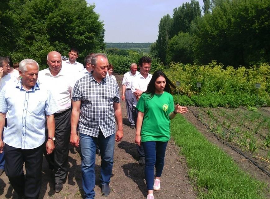 ВКорольковом саду начали воплощать проект поразвитию агротуризма