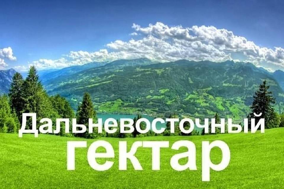 Жители России подали 99 тыс. заявок наосвоение «дальневосточного гектара»