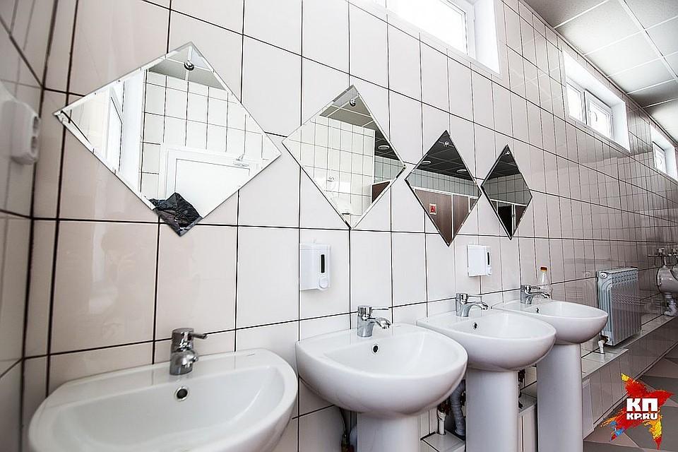 Власти Берлина посоветовали новейшую концепцию женских туалетов
