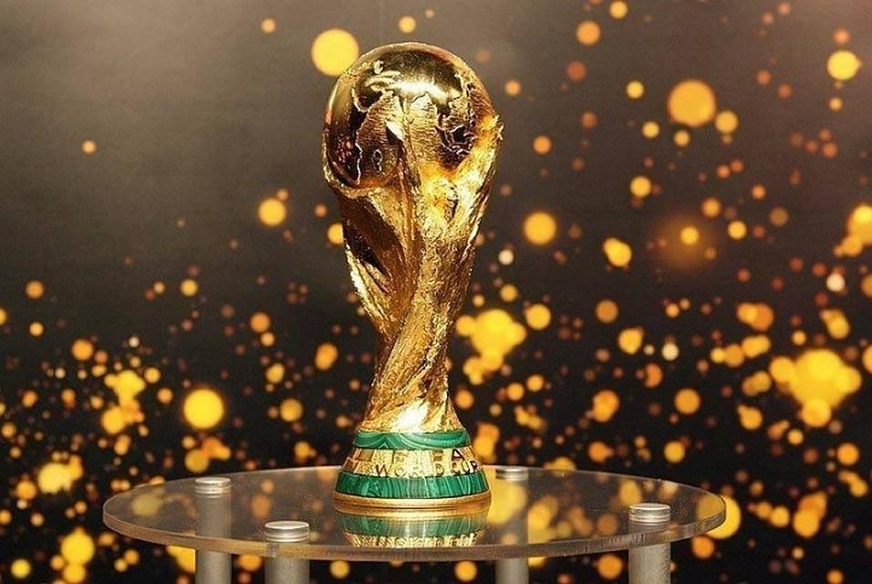 Граждане Ярославля смогут увидеть Кубок мира ФИФА