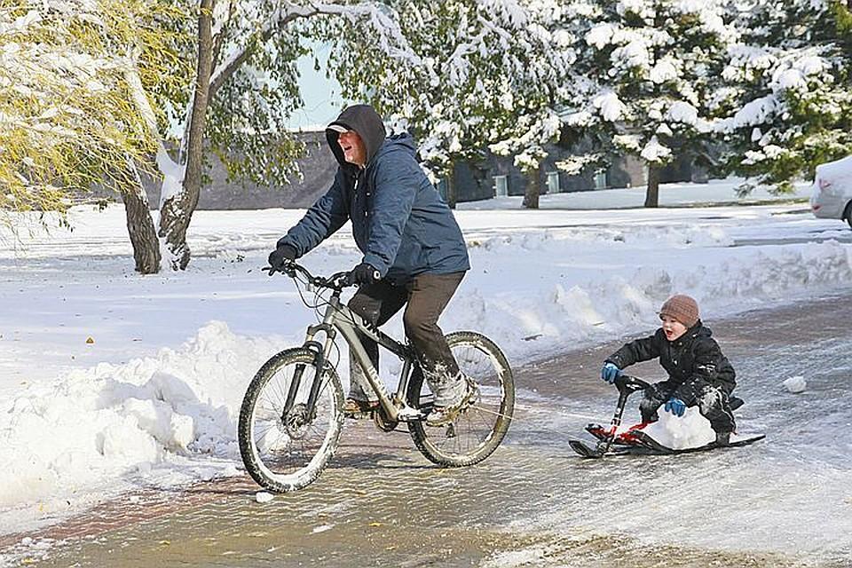 Синоптики поведали, какая зима ожидает граждан Российской Федерации