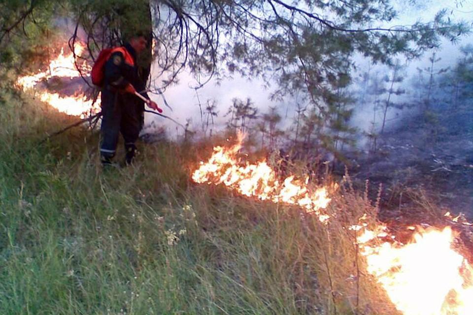 Между Ростовом иБатайском снова пылают трава икамыш