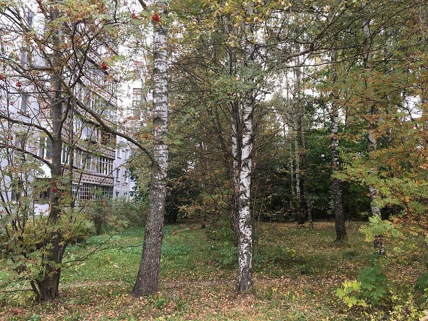 Поделу остроительстве дома наЧерняховского появились новые детали