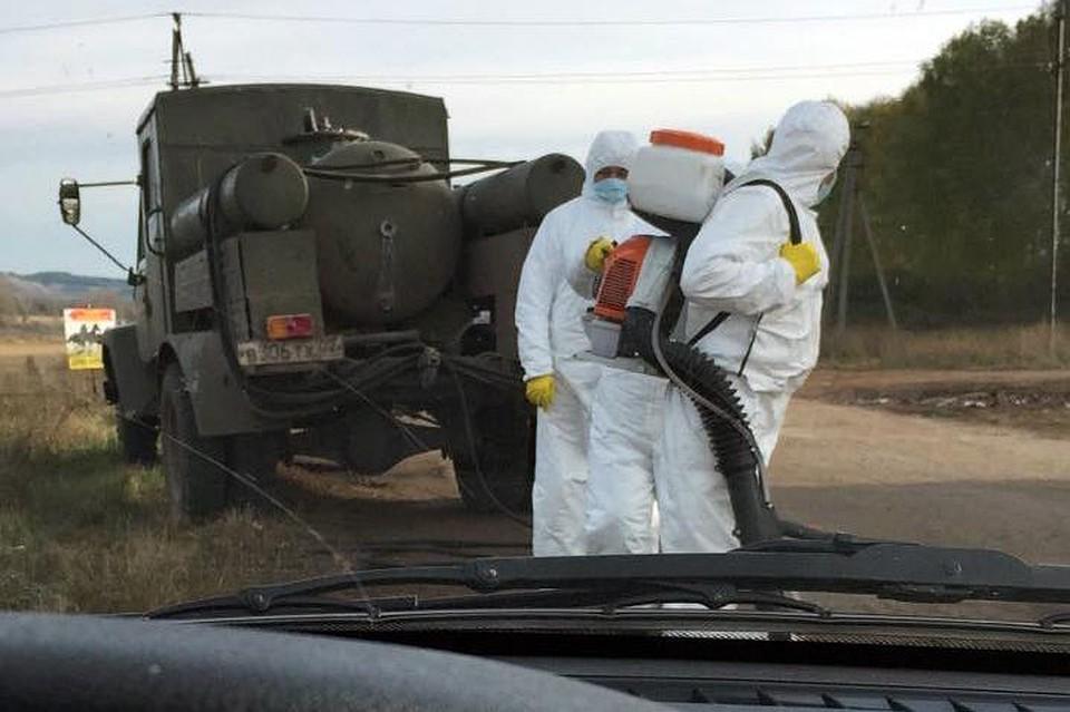 Ящур уворот: «Вирус очень быстро распространяется, втом числе аэрозольно»