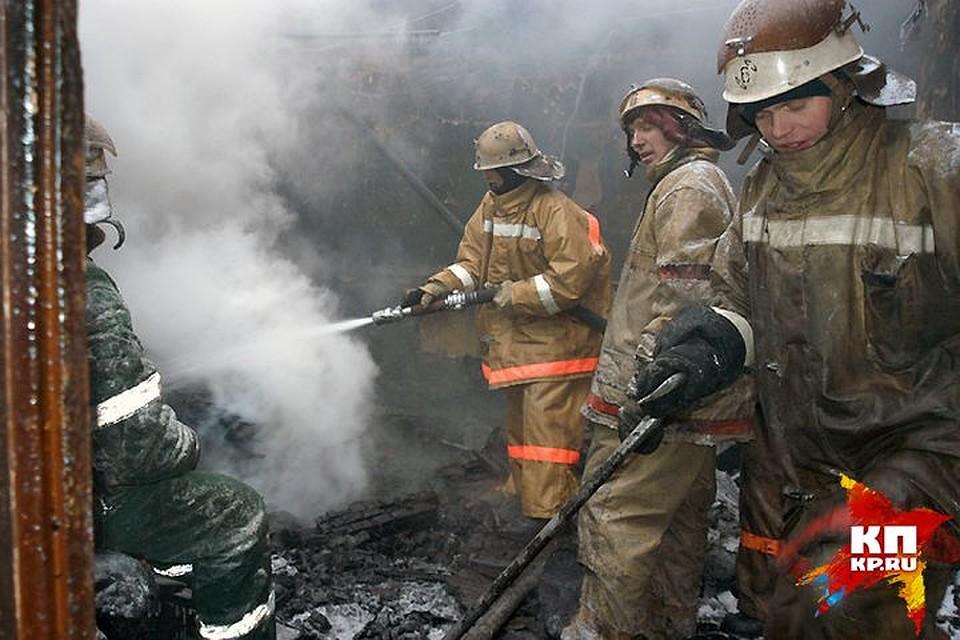 Вовремя возгорания жилого дома погибли люди вПудоже