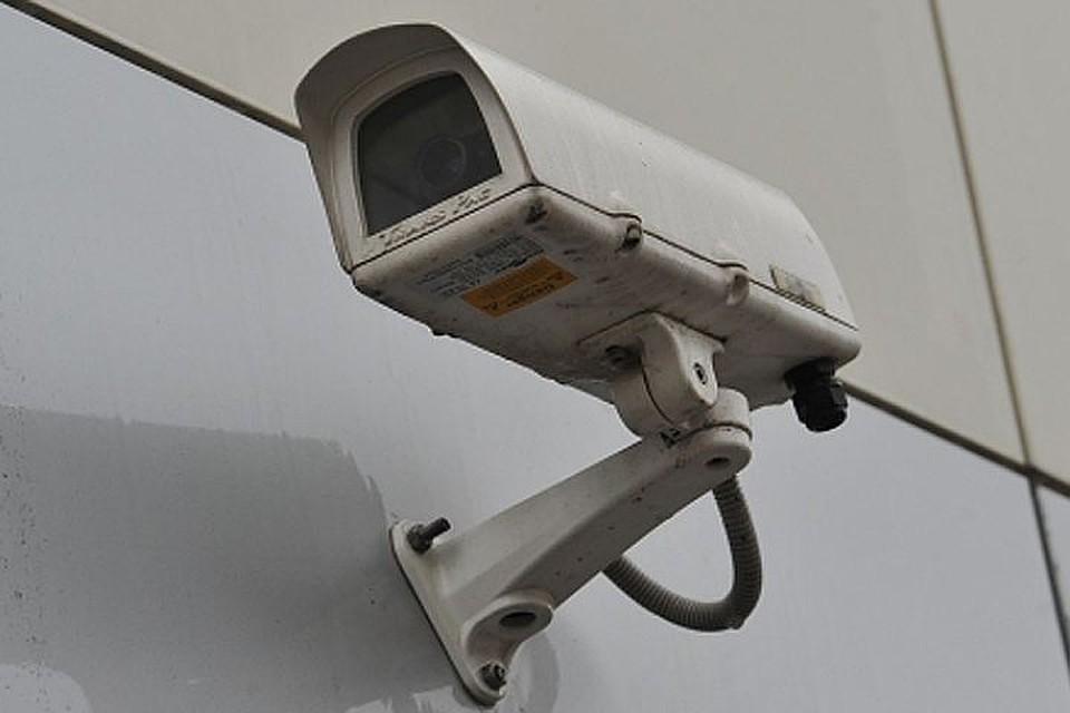 МинэкологииРТ покупает фотоловушку за550 000 руб.