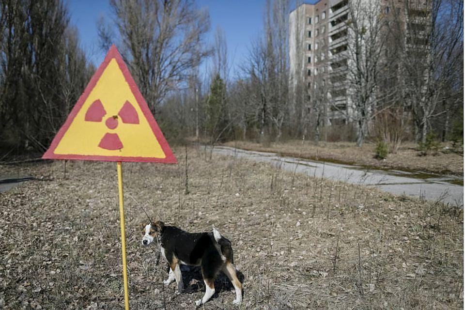 Украинские полицейские задержали вчернобыльской зоне отчуждения россиянку