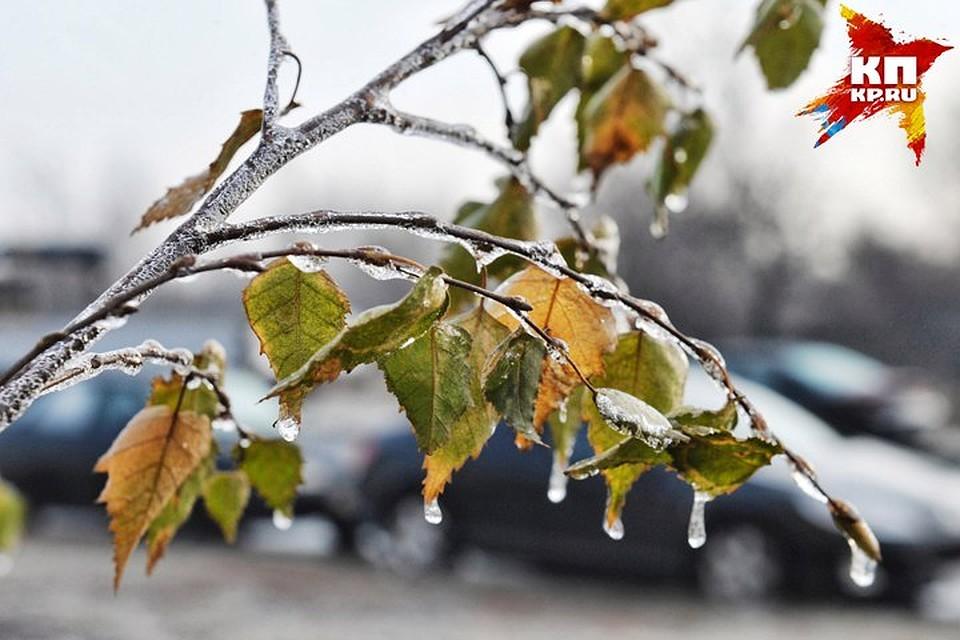 МЧС предупредило рязанцев обухудшении погоды вближайшие часы