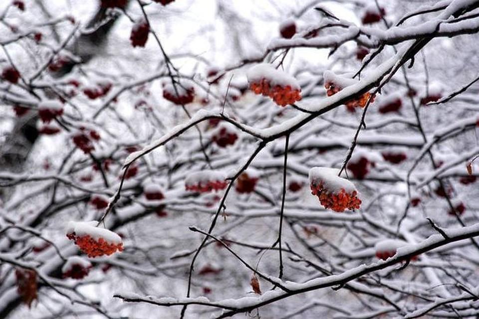 ВЧелябинской области похолодает доминус 22 градусов