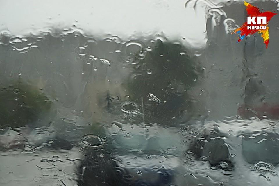 Вближайшие дни вВоронеже предполагается аномально теплая погода