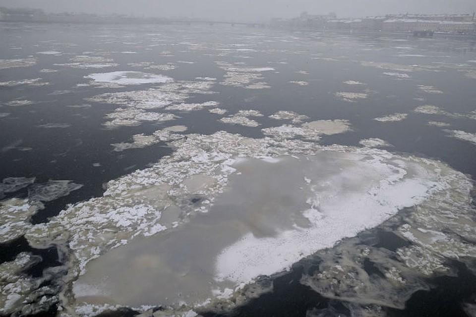 На дорогах Петербурга убирают снег 800 машин
