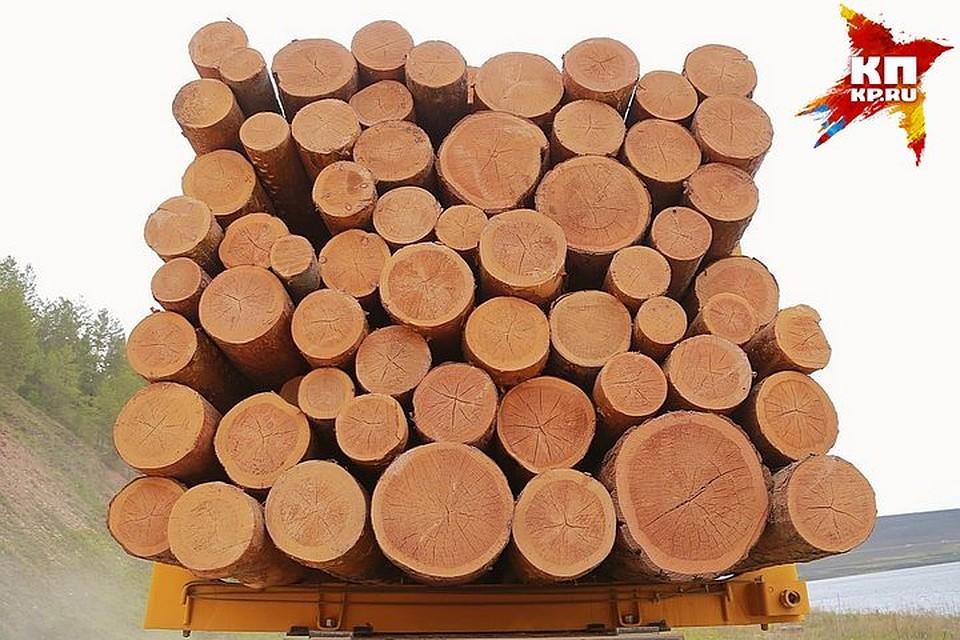 Объемы переработки древесины увеличились вКрасноярском крае