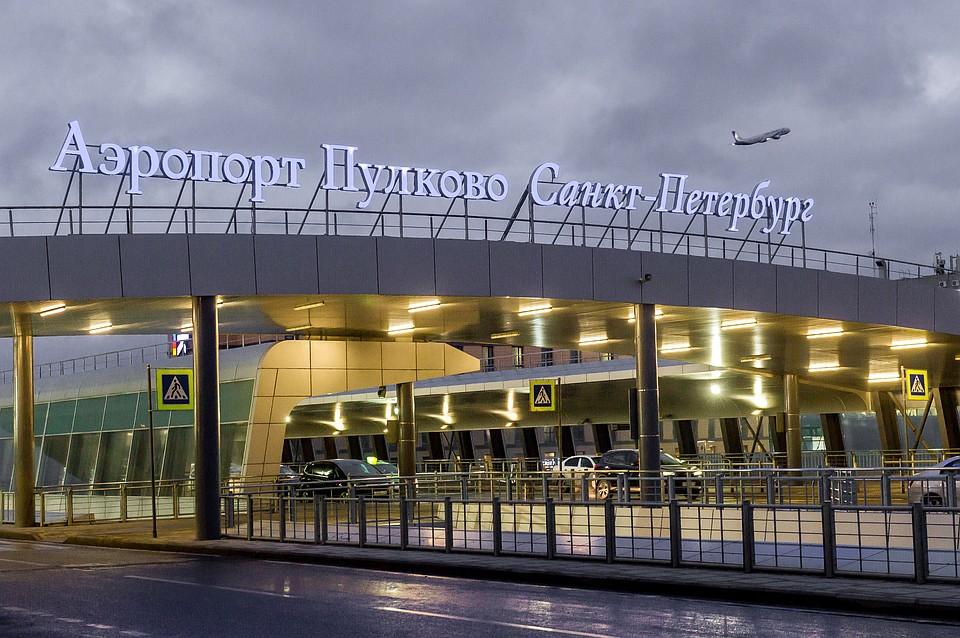 Ваэропорту Петербурга пять часов ловили львенка
