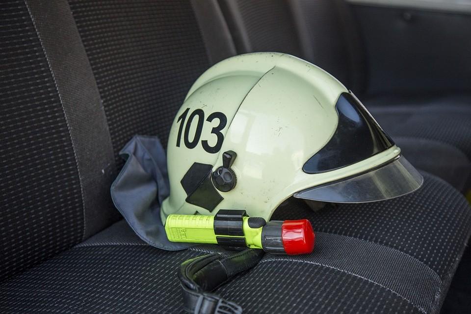 ВВерещагинском районе пожарные спасли сотню голов скота