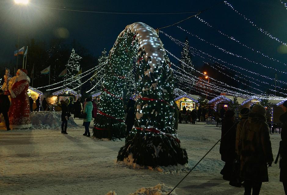 Воронеж вошел вТОП-10 известных городов для новогоднего отдыха