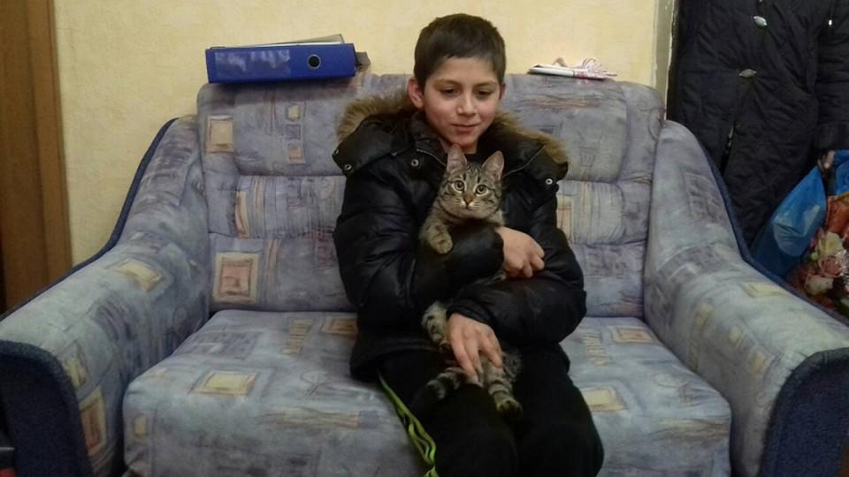 Кот согрел всарае пропавшего ребенка