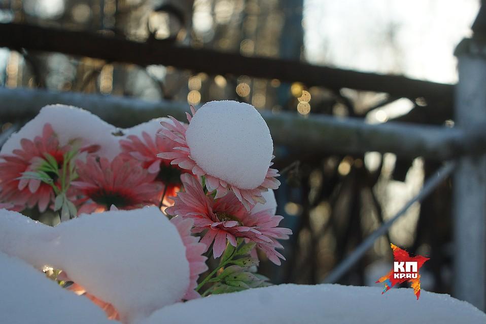 ВНижнем Тагиле словили 2-х кладбищенских похитителей