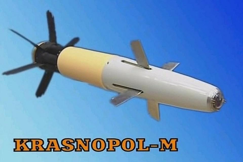 Минобороны опубликовало видео стрельб снарядами «Краснополь»