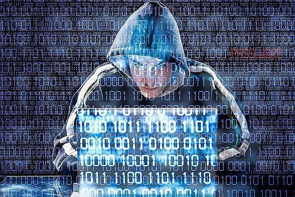 Работники  ФСБ поЧелябинской области пресекли деятельность международной хакерской группы