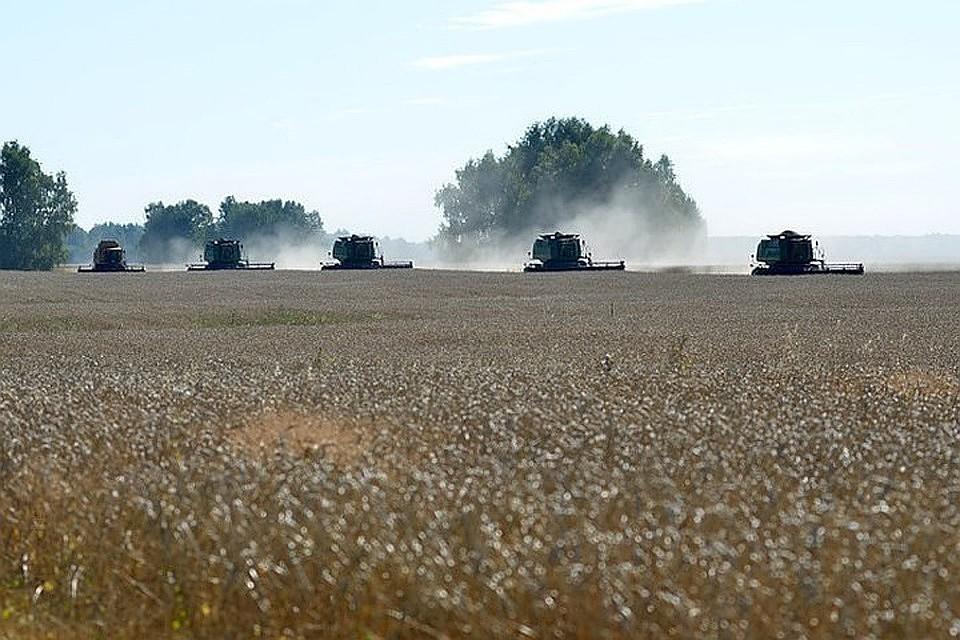Минтруд расширил список профессий селян с25-процентной надбавкой кпенсии