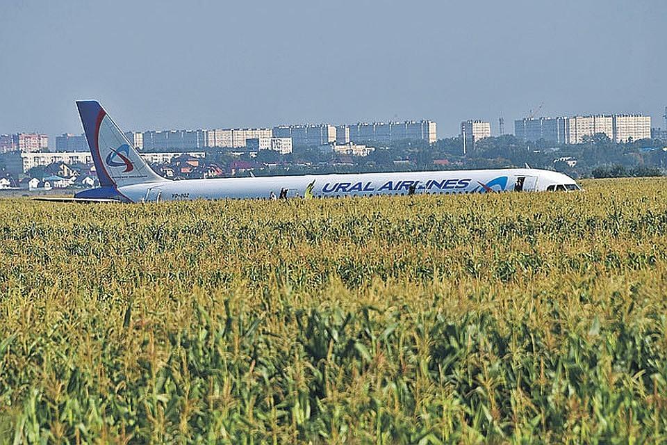 Второго пилота из самолета А321, который столкнулся со стаей птиц в Жуковском, госпитализировали.