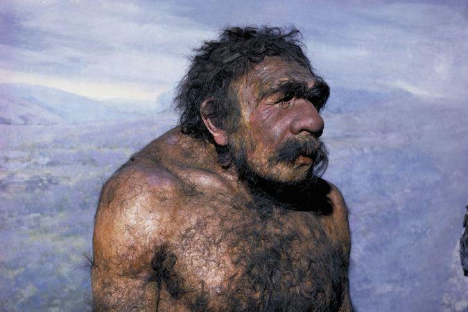 На Алтае обнаружили древнейшую в мире иглу