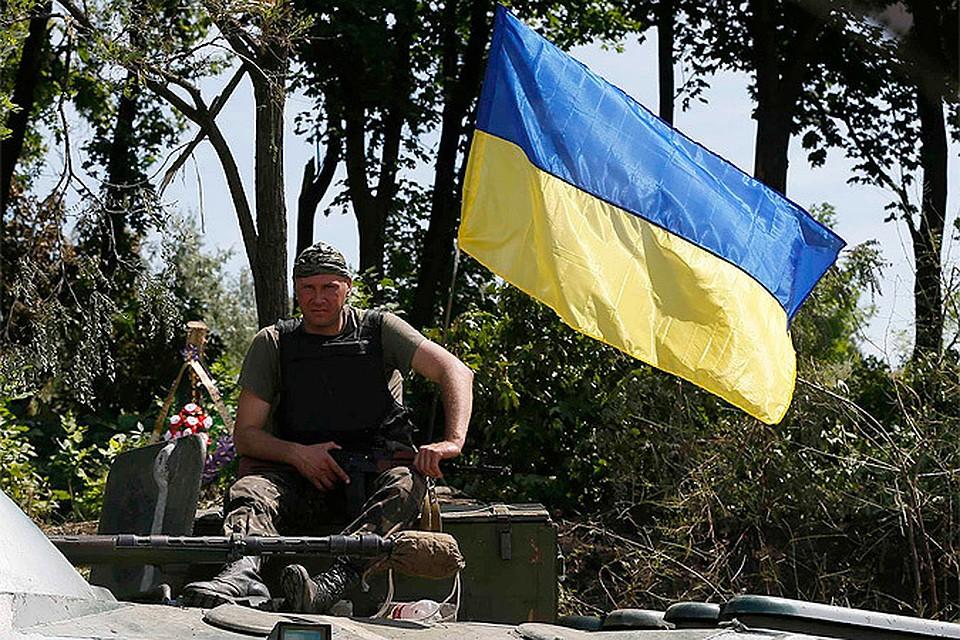 """""""Украина - вязанка соломы для поджога России"""", утверждает наш автор"""