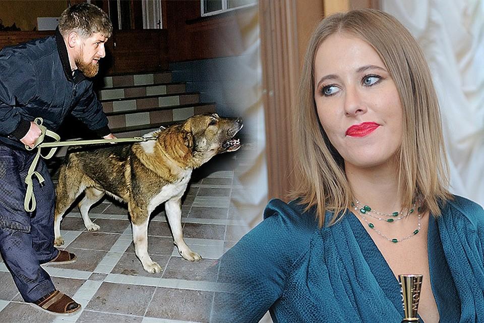 На оппозицию спустили собаку Кадырова. А оппозиция на Кадырова - Ксению Собчак