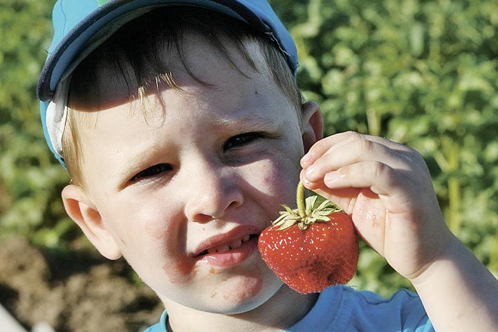 Своя ягодка всегда вкуснее.
