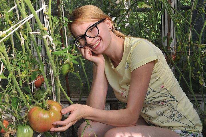 Яндекс проанализировал самые популярные запросы про сад и огород, больше всего вопросов - о выращивании помидоров.