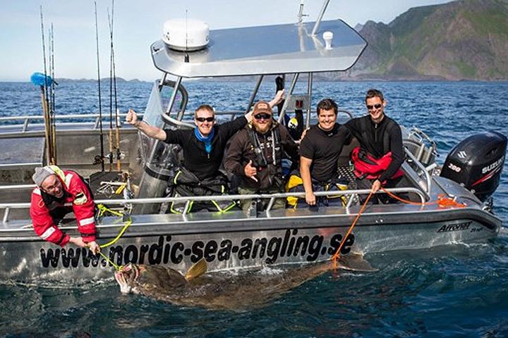 Швед поймал на норвежских Лофонтенских островах гигантского палтуса длиной 246 сантиметров и весом более 200 кг. Фото: Johan Mikkelsen/Nordic Sea Ang