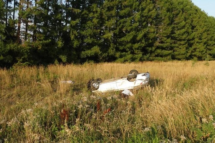 ВАлнашском районе вДТП разбился насмерть шофёр иномарки