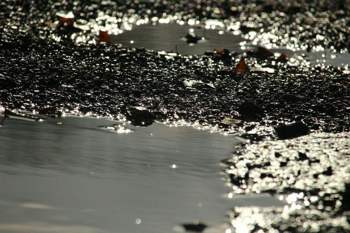 Вред отразлива нефтепродуктов вРадужном составил приблизительно неменее 250 тыс. руб.