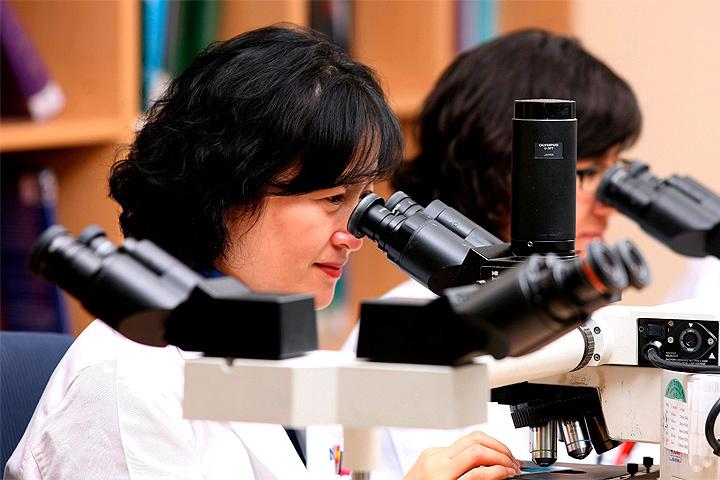 Ученым удалось выяснить, что яичники женщины способны формировать новые яйцеклетки даже в зрелом возрасте