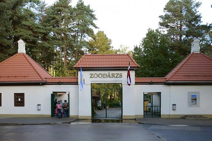Зоопарк столицы Латвии по случаю своей 104-й годовщины в выходные дни организует Дни зверей. Фото: с сайта liveriga.com