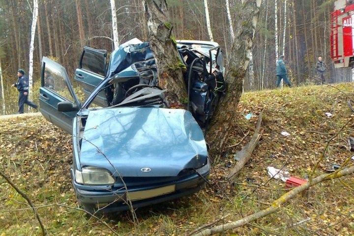 ВРязанской области в трагедии погибла автоледи